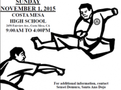 50th Annual InterDojo Tournament